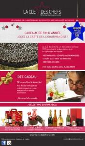 LCDC-newsletter-fin-d-annee-2014(relancev2)